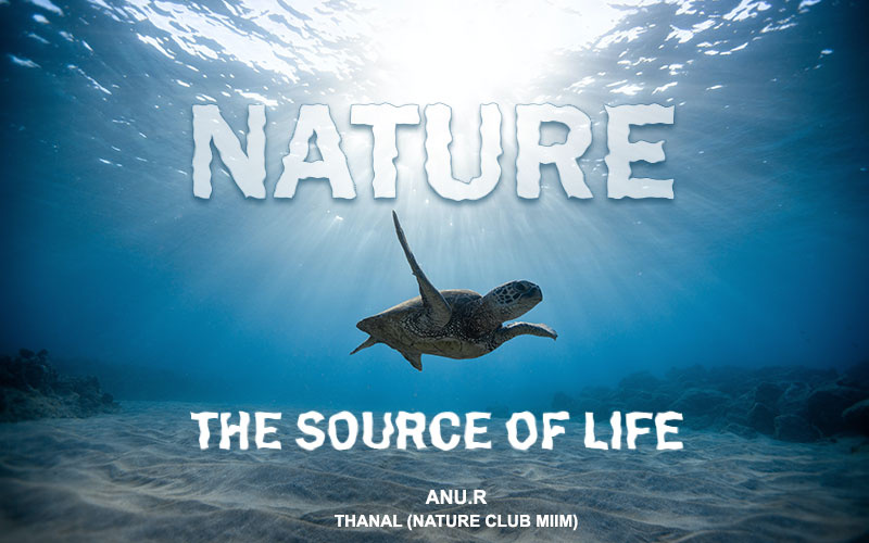 Nature -the source of life